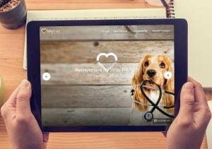 my vets web 1 300x211 - my-vets-web-1