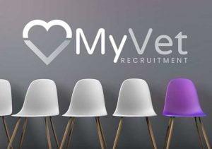 myvets branding 2 300x211 - myvets-branding-2