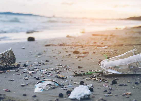 oct o2c keep it clean blog 550x392 - Join the fight against plastic waste